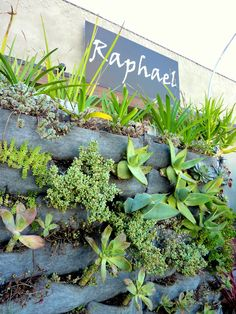 Raphael Restaurant On Ventura Blvd In Studio City, Los Angeles Doubled The  Size Of Itu0027s Street Front Living Walls During Their Current Expansion.
