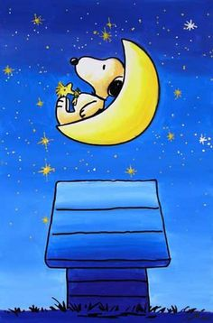 Night & Snoopy Hey Snoopy not sleep there are stars !!!! : D Smilesss