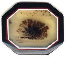 Dendritic Agate Meaning | Wyoming Dendritic Agate