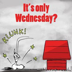 It's only wednesday snoopy wednesday hump day wednesday quotes happy wednesday wednesday quote Die Peanuts, Charlie Brown And Snoopy, Peanuts Snoopy, Wednesday Hump Day, Wednesday Humor, Hump Day Humor, Monday Memes, It's Monday, Thursday
