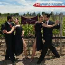 Tango Festival by Wine Route in Mendoza A top tour in the Tango festival by wine route Mendoza. #Tango #Festival by #Wine #Route, is incorporated from 2008, as a tribute to the city music. It has featured local artists of international standing, walking Mendoza #wineries. #Rotary Club East. Check your#Travel #Tour #Packages #Vacations at #Mendoza#TangoFestival #WineRoute in #Argentina.