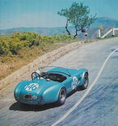 Ford Cobra at Targa 1964    Gurney-Grant