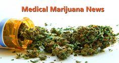 Dr. Thorsten Rudroff  PhD, Director of CSU's Integrative Neurophysiology Lab discusses Medicinal Marijuana