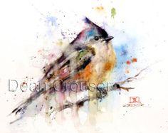 MOÑUDO carbonero pájaro acuarela lámina por Dean Crouser