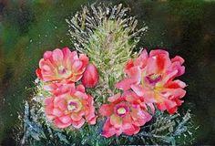 watercolor of cactus flowers