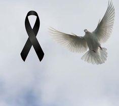 Ribbon Logo, Positive Phrases, Condolences, Love Images, Black Ribbon, Nostalgia, Memes, Anime, Luigi