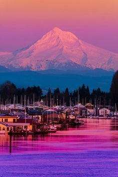 Portland, Oregon.                                    I'm so lucky. I'm waking up in Denver and booking my future in Portland ♡♡♡♡