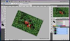 Adobe photoshop CS6 extended http://photoshop.programas-gratis.net/