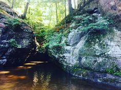 #wisconsin #someplaceelse #natureporn #blackwaterpark