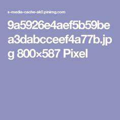 9a5926e4aef5b59bea3dabcceef4a77b.jpg 800×587 Pixel