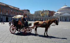 lucoli68 scrive: Itinerario musicale,Canoro, con visita guidata ai luoghi più…