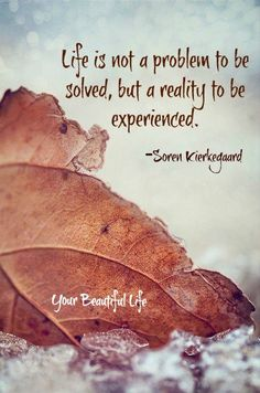 Life is not a problem to be solved, but a reality to be experienced. ~ Søren Kierkegaard