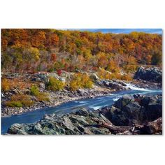 Trademark Fine Art Potomac Autumn Canvas Art by CATeyes, Size: 30 x 47, Multicolor
