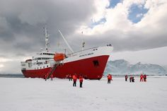 Antarctica - the only cruise opportunity that interests me ---- my 7th continent