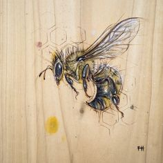 Bee - Pyrography and natural pigments on poplar (indigo, pollen, zinc) ~ x Bees And Wasps, Bee Art, Insect Art, Save The Bees, Bees Knees, Queen Bees, Bee Keeping, Art Plastique, Pyrography