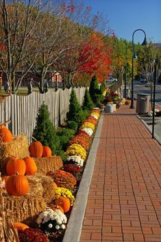 Welcome Fall, Autumn Scenery, All Nature, Fall Pictures, Fall Images, Autumn Garden, Fall Harvest, Autumn Fall, Fall Mums