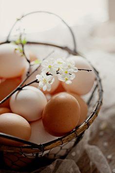 lovely eggs for Easter Art Pass, Farm Photography, Egg Basket, Chicken Eggs, Simple Pleasures, Happy Easter, Food Art, Easter Eggs, Spring