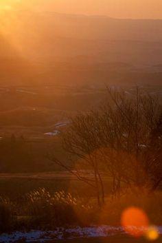 """ Light of the winter evening ""  23.Jan.2014  阿蘇、冬の夕刻の光。一気に気温が下がる。"