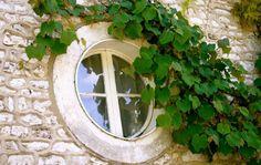 A round window Door And Window Design, Door Design, Exterior Design, Wood Windows, Windows And Doors, Outdoor Garden Sheds, Outdoor Gardens, Cottage In The Woods, Looking Out The Window