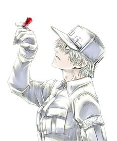 Cells at work Fan Anime, Anime Manga, Otaku, Anime People, Blood Cells, Fanart, Manga Games, Fujoshi, Anime Characters