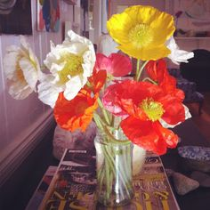 absolutely beautiful things: Pretty Poppies