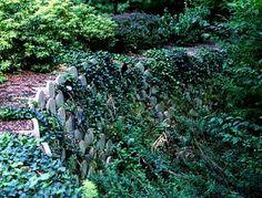 The Making of a Cottage Garden - Jan Johnsen