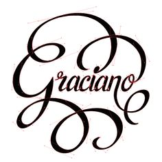 hand lettering for a special edition wine (J. García Carrion Co)