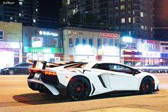 Cool White Aventador