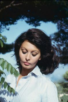 sophia loren that bone structure