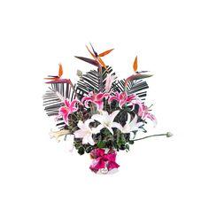 Liliums y Exóticas - Arreglos Florales