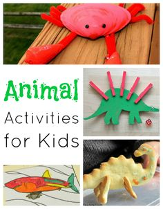 Animal activities for kids, catching spider webs, frog jump game, crab craft, 3D dinosaur cookies and more!