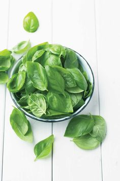 Learn about historic uses for basil and how you can incorporate basil varieties into different recipes today.data-pin-do=