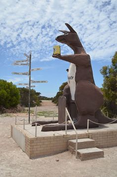 The big kangaroo • Border Village South Australia • aussie big things Australia