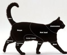 cat petting chart - fairly accurate. Tried on my cat, so true!