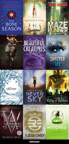 12 Book Series That