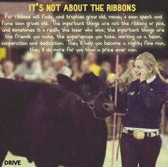 DRIVE truly reminds us, it's not about the ribbons. I don't even show livestock, but I love this quote. Cow Quotes, Horse Quotes, Animal Quotes, Farm Quotes, Family Quotes, Show Cows, Show Horses, Country Girl Quotes, Country Girls
