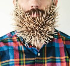 """""""Will It Beard"""" (in homage to Will It Blend of course), a series of capillary experimentsconducted by Pierce Thiotand his wife Stacy, which is to try to put"""