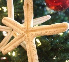 Starfish Salt Dough Craft -Decorations, Garlands and Ornaments.