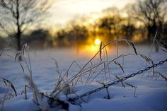 Frosty winter sunrise.