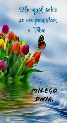 Miłe – – – Source by Beautiful Love Pictures, Beautiful Flowers, Good Vibes, Motto, Animals And Pets, Good Morning, Morning Coffee, Humor, Funny