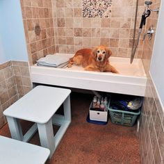 Pet shower: under shower storage for bench, towels, and soaps. Good use of space.
