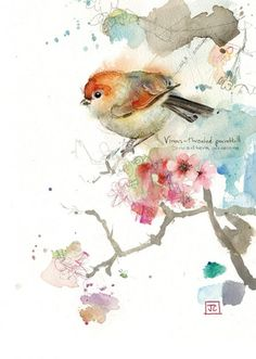 Parrotbill by Jane Crowther. Design for Bug Art greeting cards. Watercolor Bird, Watercolor Animals, Watercolor Paintings, Watercolors, Watercolor Artists, Watercolor Portraits, Watercolor Landscape, Bird Illustration, Illustrations