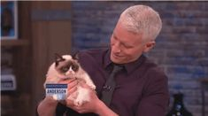 When Anderson Cooper Met Grumpy Cat -- look how small she is! just like my cats!