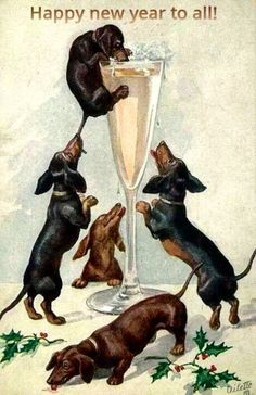Vintage New Year postcard - dachshunds and champagne