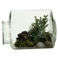 """Add a touch of organic appeal to your décor with this eye-catching design, offering fresh style throughout the seasons.  Product: TerrariumConstruction Material: Silk and glassColor: Green and clearFeatures:   Includes faux Easter grass and sedumMade in the USA Dimensions: 9"""" H x 12"""" W"""