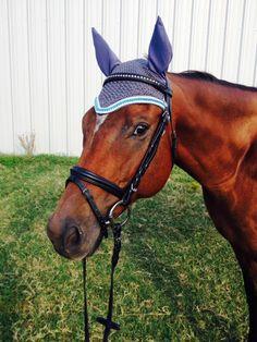 Review: Cavalletti Custom Bonnets   Velvet Rider