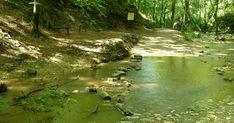 3 lélegzetelállítóan gyönyörű patak hazánkban, amit látnod kell | Femcafe Hungary, Golf Courses, River, Outdoor, Outdoors, Outdoor Games, Outdoor Living, Rivers