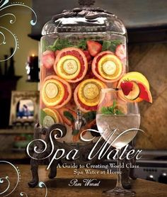 Gourmet Water? Spa Water book by Pam Wenzel
