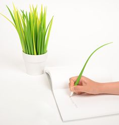 POOLEAF is a cool pen designed to look like a real leaf, sou you can buy many and make a vase full of pens that look great