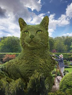 A topiary cat by British artist and photographer Richard Saunders to honor the passing of his grey cat, Tolly. Cute Baby Cats, Cute Funny Animals, Cute Baby Animals, Animals And Pets, Funny Cats, Cool Cats, I Love Cats, Crazy Cats, Beautiful Cats